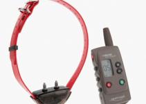Num'axes Canicom Expert 300 Dog Training Collar Complete Set, best 5 Num'axes Canicom dog training collars