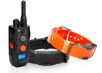 Dogtra Arc 802 Dog Training collar, 3 Best Dogtra Dog Training Collars For Single and Double Dogs