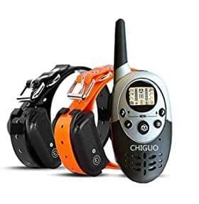 Chiguo Dog Training Collar, 21+ Best Training Collar For Puppies and stubborn dogs - best shock collars for small dogs