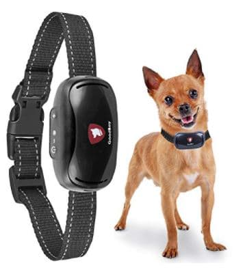 Goodboy Anti Bark Collar, 21+ Best Training Collars For Puppies and stubborn dogs | Best shock collars for small dogs