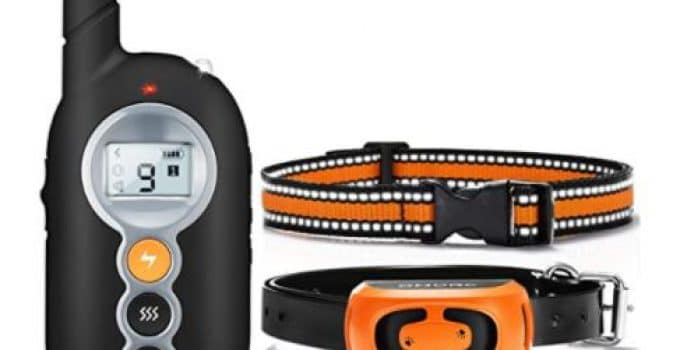 Feature image OMORC Dog Training Collar, 21+ Best Training Collars For Puppies and stubborn dogs | Best shock collars for small dogs