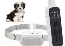 Sumao Rechargeable Anti-Bark Citronella Dog Training Collar