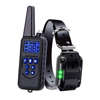 Wodondog Dog Training Collar (2), 21+ Best Training Collars For Puppies and stubborn dogs | Best shock collars for small dogs