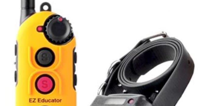 Easy Educator 0.5 Mile Dog Training System, Best Shock Collar For Golden Retriever